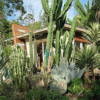 Drought-Tolerant Landscaping Rapidly Becoming a Selling Point in California