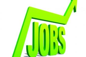 Bay Area Job Market Chugs Along in October